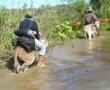 Iniciaron asistencia a comunidad afectada por inundaciones