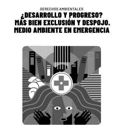 Derechos Ambientales – Informe sobre la Situación de los Derechos Humanos en Paraguay